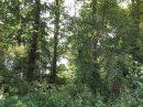 Propriété <b class='safer_land_value'>110 ha 52 a 82 ca</b> Pyrénées-Atlantiques
