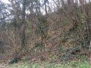 Propriété <b class='safer_land_value'>02 ha 55 a 25 ca</b> Calvados
