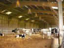 Propriété <b>78 ha </b> Haute-Vienne