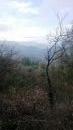 Propriété <b>04 ha 72 a </b> Alpes-Maritimes