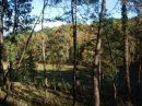 Propriété <b>41 ha 92 a </b> Dordogne