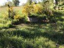 Propriété <b>80 ha 80 a </b> Haute-Loire