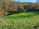 Propriété <b class='safer_land_value'>53 a 64 ca</b> Haute-Loire