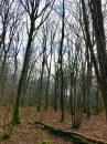 Propriété <b class='safer_land_value'>90 ha 30 a 28 ca</b> Yonne