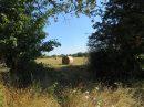 Propriété <b>105 ha </b> Vendée