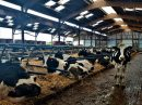 Propriété <b class='safer_land_value'>186 ha </b> Loire-Atlantique