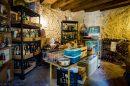 392 m²  15 pièces Pressignac-Vicq 11KM Maison