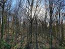 137 m² Maison Saint-Hilaire-les-Andrésis   6 pièces
