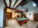 Maison 350 m² Conflans-sur-Loing  10 pièces