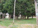 Terrain 0 m² La Selle-sur-le-Bied   pièces