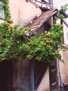 Obernai Centre Ville Maison 80 m² 4 pièces
