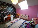 6 pièces Thal-Drulingen  Maison  164 m²