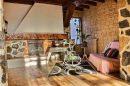 Maison  Planaise  12 pièces 300 m²