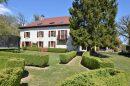 12 pièces Maison  Divonne-les-Bains  390 m²
