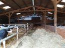 Exploitation agricole laitière 930 000l polyculture Nord Vendée sur 110ha SAU