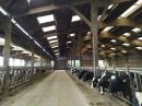 Polyculture farming south Loire-Atlantique on 120ha