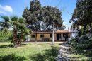 Maison  Alaior Minorque 11 pièces 512 m²