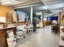 Immobilier Pro Arnas Secteur 1 Villefranche sur saône 420 m² 0 pièces