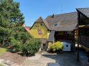 440 m² Eichhoffen VIGNOBLE 5 pièces  Maison