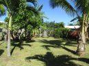 PUNAAUIA - Maison T5 à PK18  en face de la plage de sable blanc