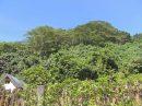 Terrain 0 m²  pièces pueu Presqu'île