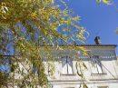 Maison La Lande-de-Fronsac  240 m² 7 pièces