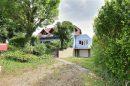 146 m² 6 pièces Westhouse Plaine Ried Benfeld Erstein Maison