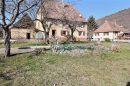 8 pièces 167 m²  Maison Lautenbachzell