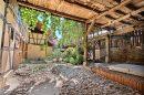 11 pièces Valff Obernai Maison 361 m²