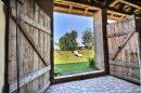 Maison Valff Obernai 361 m² 11 pièces
