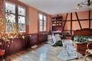 6 pièces Maison 427 m² Barr Centre Ville - Vignoble