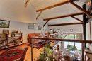6 pièces Maison Lubine Villé - Saint Dié 199 m²