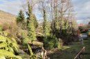 Jardin - vignoble -rare - maison - style - cachet