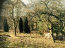 Terrain Muhlbach-sur-Bruche 4 Parcelles 144-145-146 0 m²  pièces