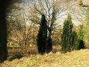 Muhlbach-sur-Bruche 4 Parcelles 144-145-146  0 m² Terrain  pièces