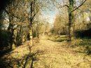 Terrain  Muhlbach-sur-Bruche 4 Parcelles 144-145-146  pièces 0 m²