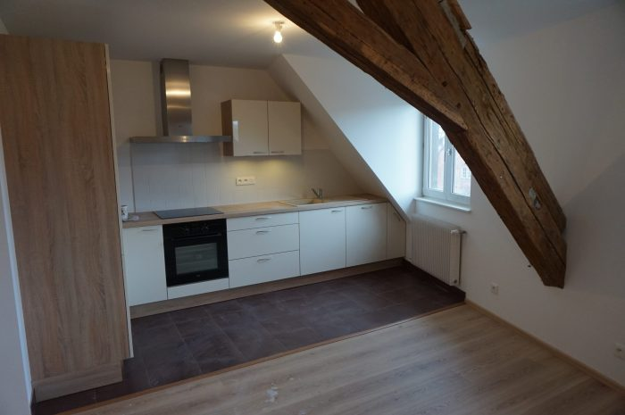 photo de Appartement T4 Duplex - Centre historique