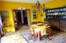 Maison  Colmar  275 m² 7 pièces