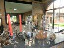 Maison  Pecq Secteur Belgique 10 pièces 350 m²