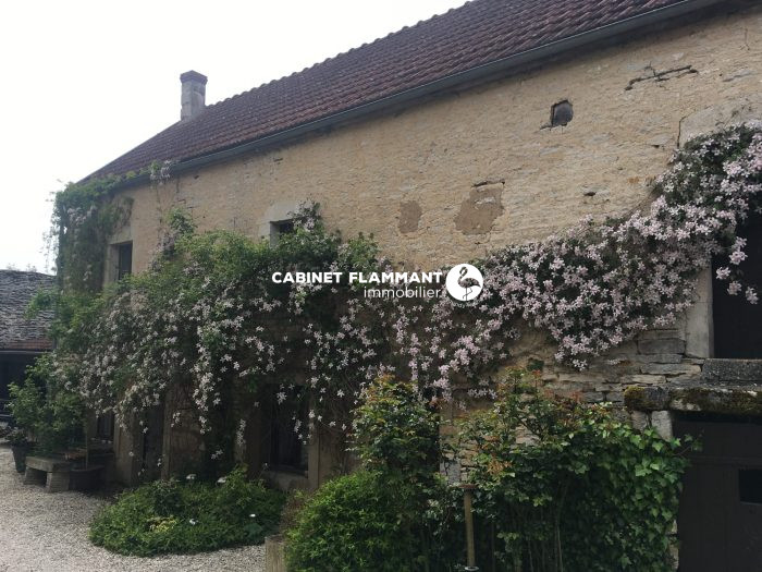 Maison ancienne Montbard MONTBARD 295 m²