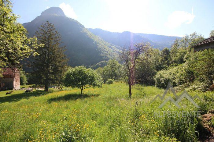 VenteTerrainLA BAUME74430Haute SavoieFRANCE