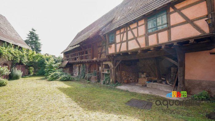 Maison Dambach-la-Ville   7 pièces 300 m²