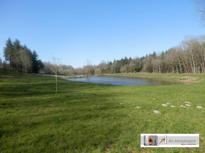 photo de Charmant étang au milieu des champs et des bois