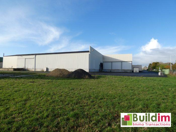 0 pièces  2000 m² Falaise  Immobilier Pro