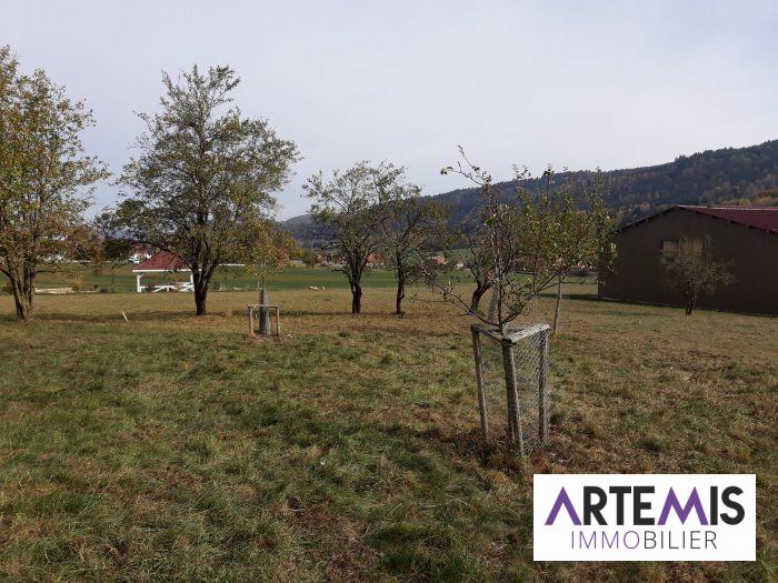 VenteTerrainAMATHAY-VESIGNEUX25330DoubsFRANCE