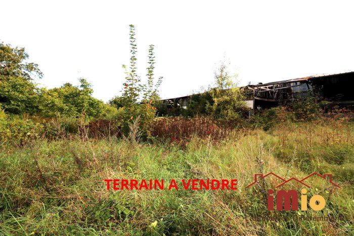 VenteTerrainISLES-SUR-SUIPPE51110MarneFRANCE