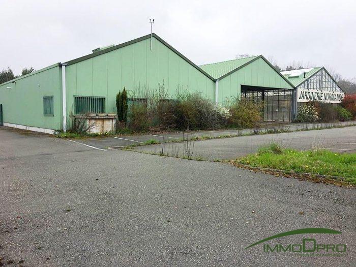 Local industriel à vendre Belmesnil