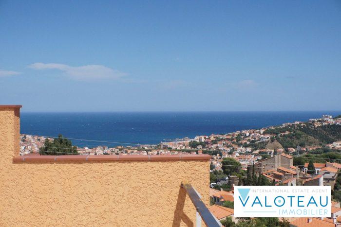 photo de Banyuls sur mer , villa neuve 2017  5 pièces   accès plain-pied 180 m2 hab  vue mer et montagne