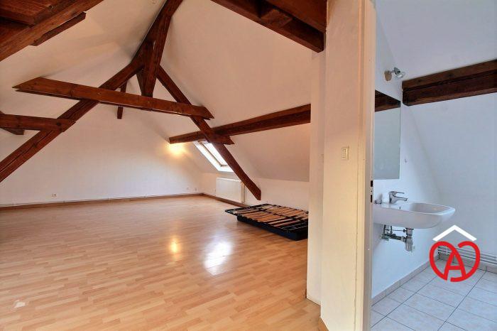 photo de Grand appartement 1 pièce