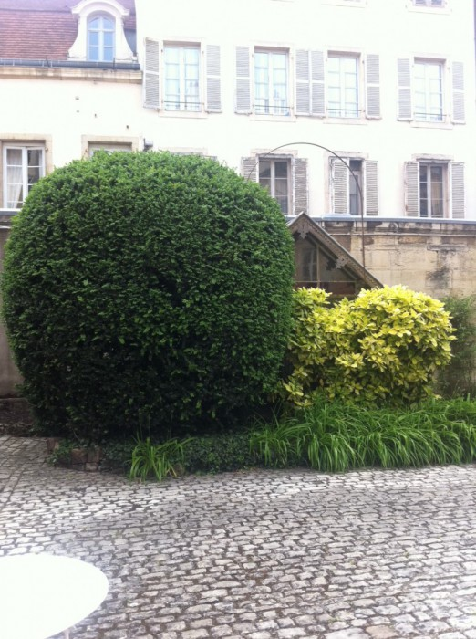 Appartement 61 m² Dijon  3 pièces